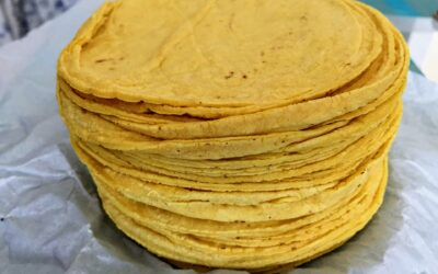 Corn Flour Tortillas Recipe